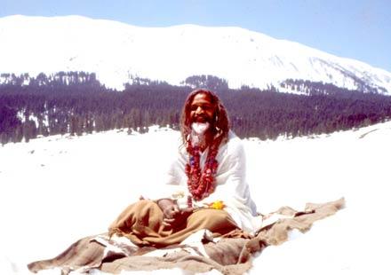 maharishi himalayas