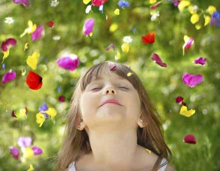 flowers, flower petals