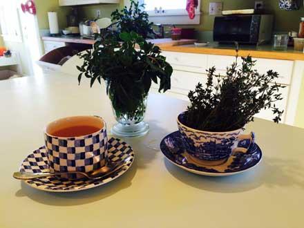 herb tea, herbal tea